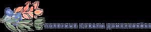 Логотип сайта Самые полезные советы